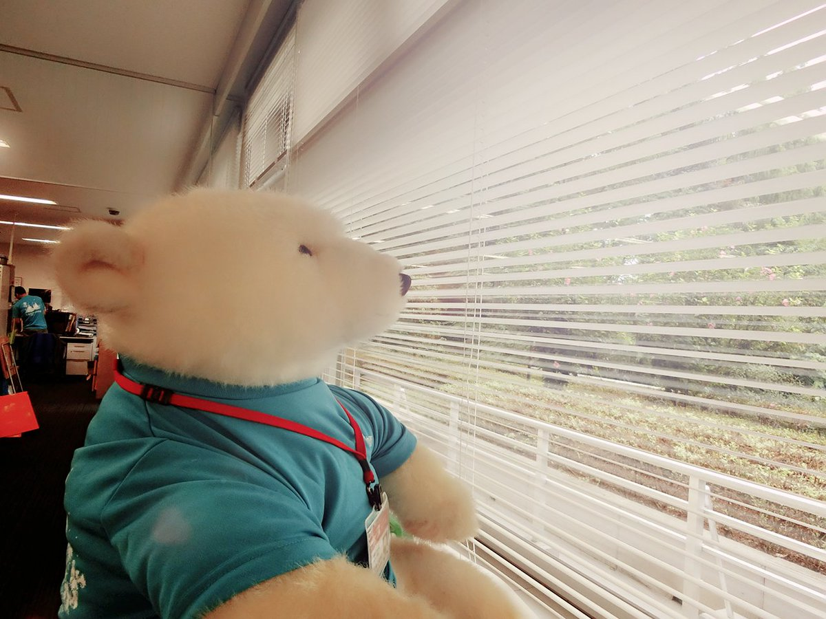 上野動物園開園の時間です。昨年わたしも参加した 「真夏の夜の動物園」今年は9日から開催されます。スケ…