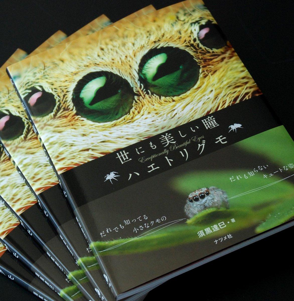 著書「世にも美しい瞳 ハエトリグモ」が来週発売されます!一般の方向けに「ハエトリグモという、こんな魅…