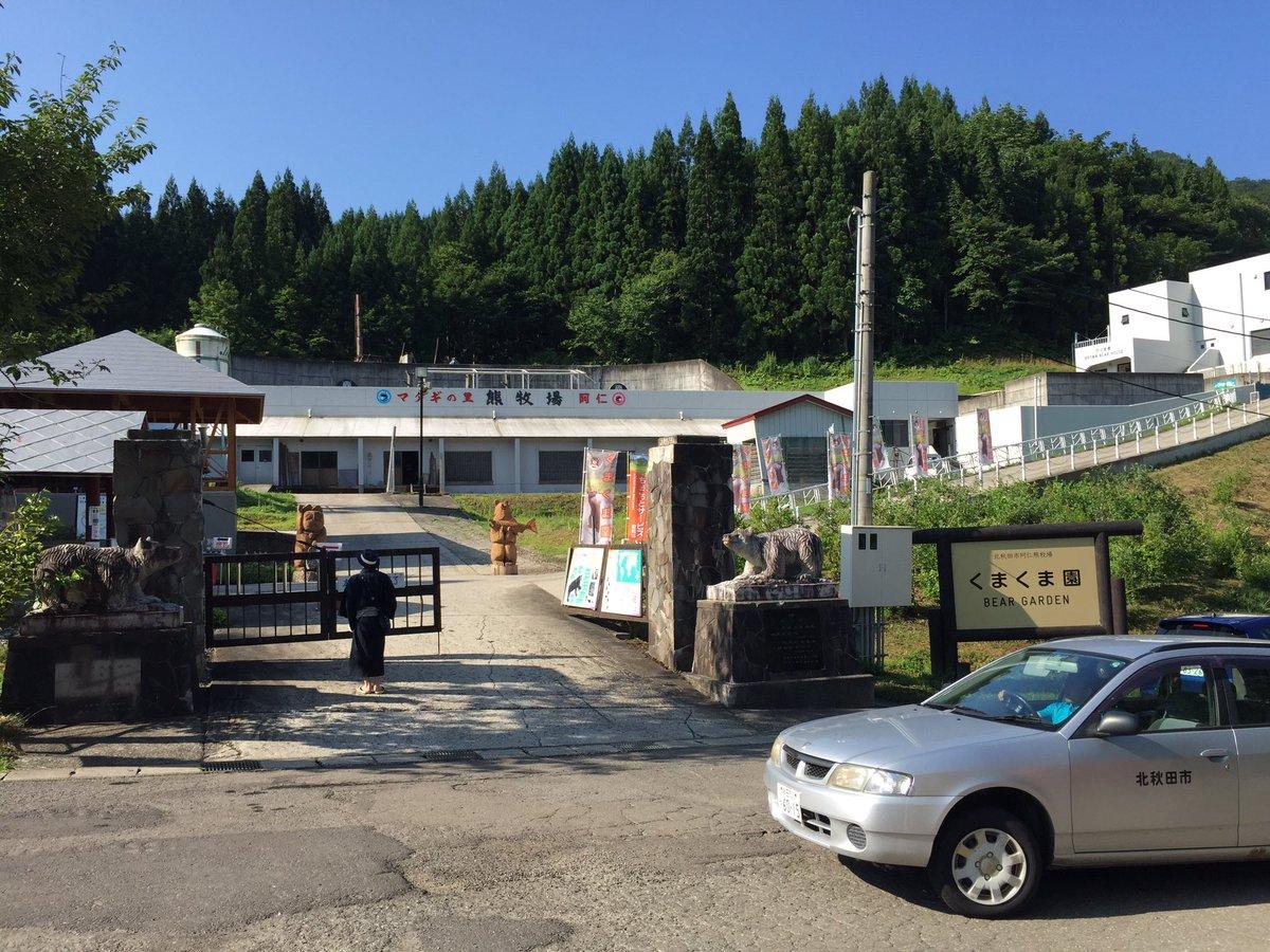 くまみこイベント会場 北秋田市くまくま園からおはようございます!