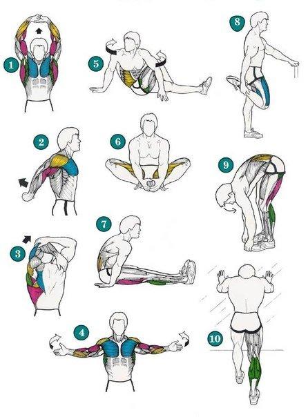 Комплекс упражнений растяжка в домашних условиях