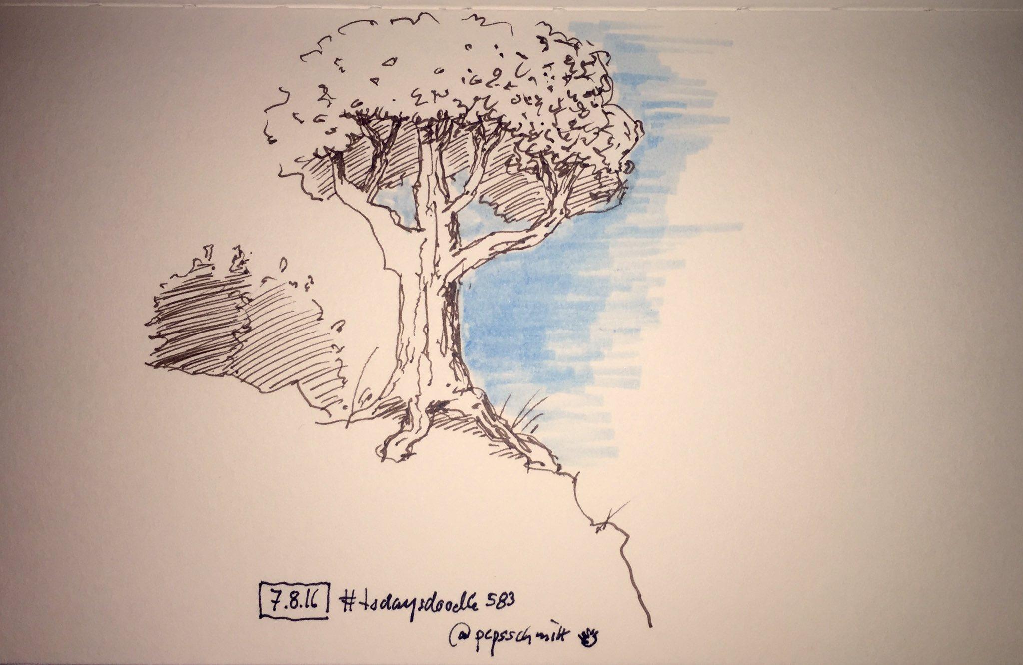 #todaysdoodle 583 #handdrawn #tree https://t.co/6ttFzHvHk3