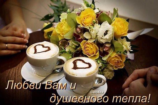 Фото цветы и кофе с добрым утром