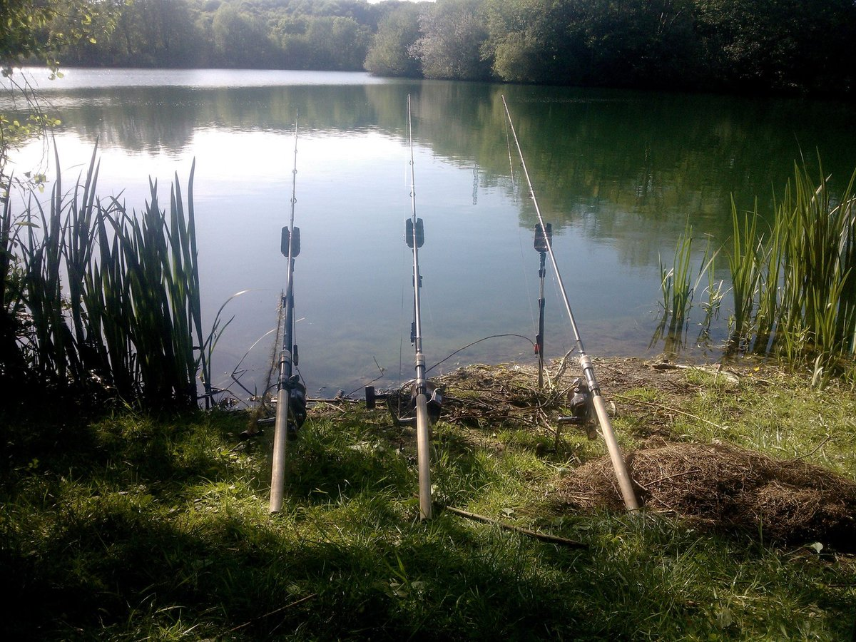 Let's go ! #speedfishing #carp #fishing #carpfishing #adventurer #<b>Chodrig</b> #popup #nice https: