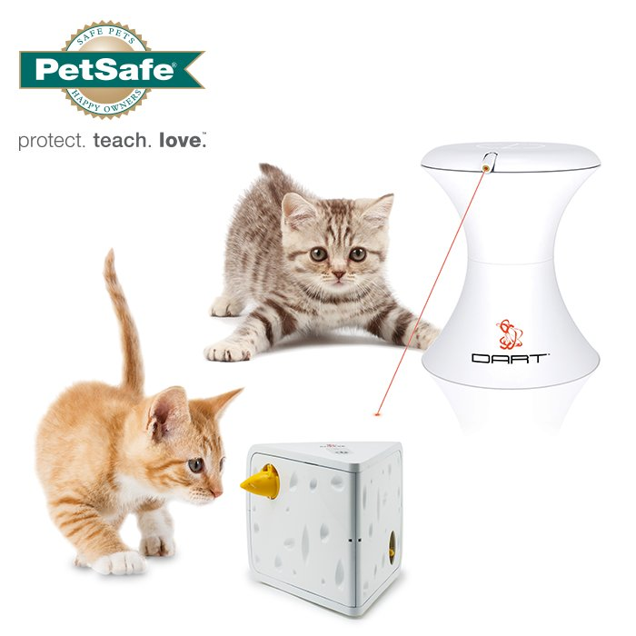 It's #competition time! Celebrate #InternationalCatDay & RT before 4pm tomorrow to win @PetSafeUK goodies worth £50! https://t.co/6ifaY60Fdj