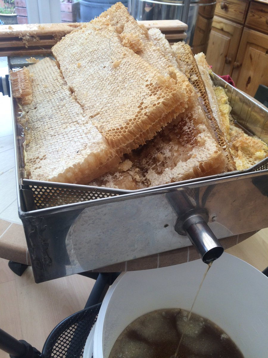 RT @BrayBees: Melting the oil rape honey out of the comb which the girls bought back to their hive in @IAMKELLYBROOK garden https://t.co/XE…