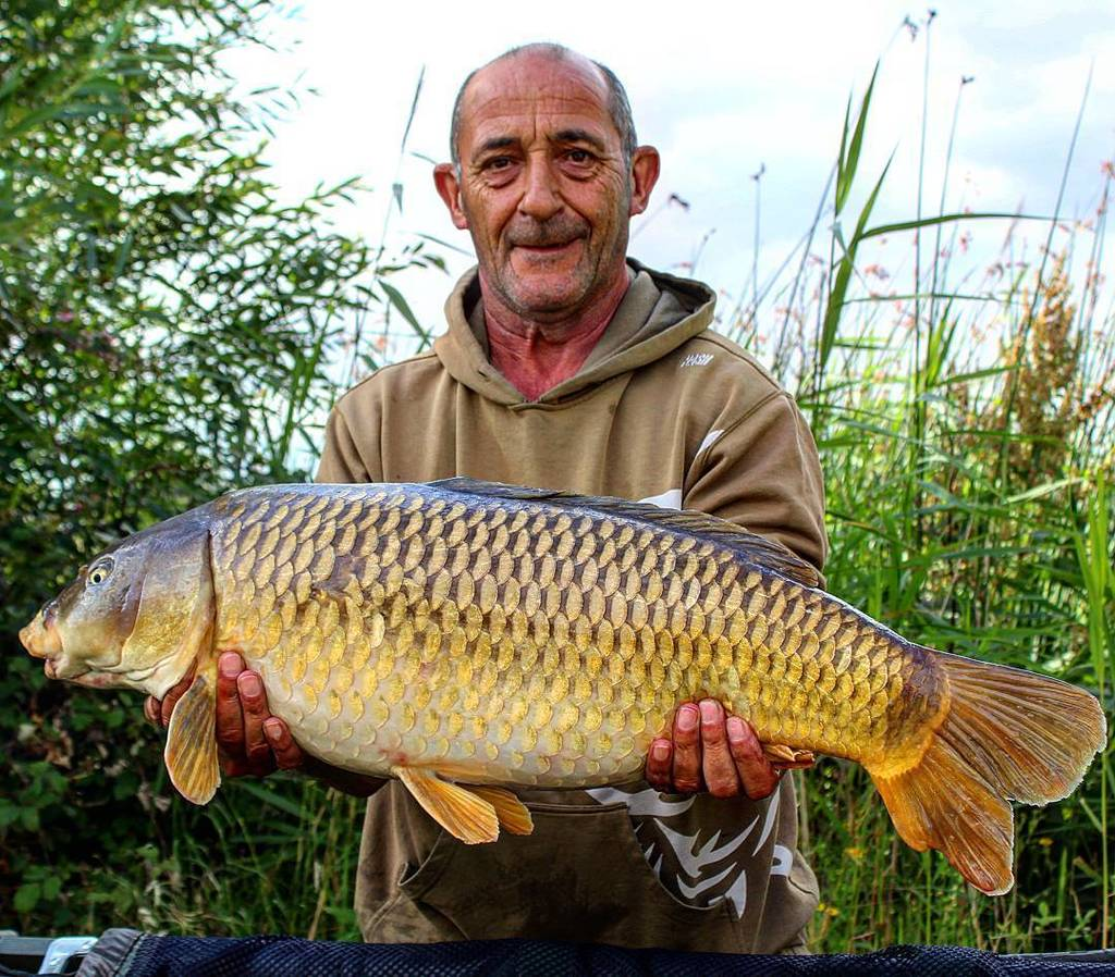 Member Les with a 20lb+ Crowsheath Common. #commoncarp #carpfishing #carplife #<b>Dayticket</b>fi…