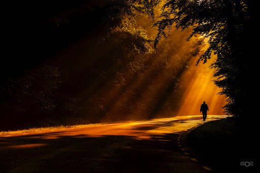 If light is in your Heart,   you will find your way Home.   ~Rumi https://t.co/aua50qPD5F