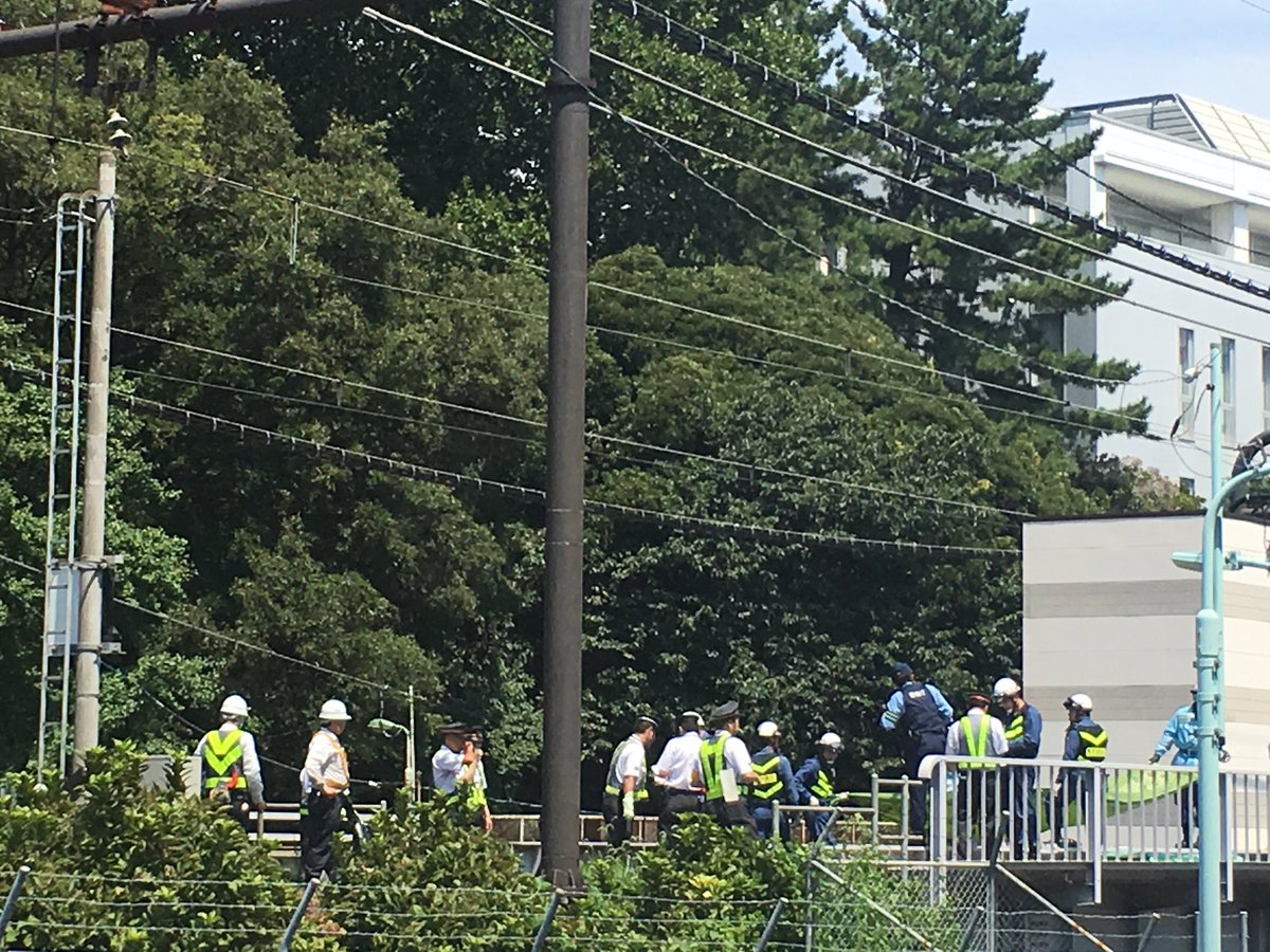 警察が駒東で目撃者を探しておりますな。 https://t.co/1lDWozMkNl