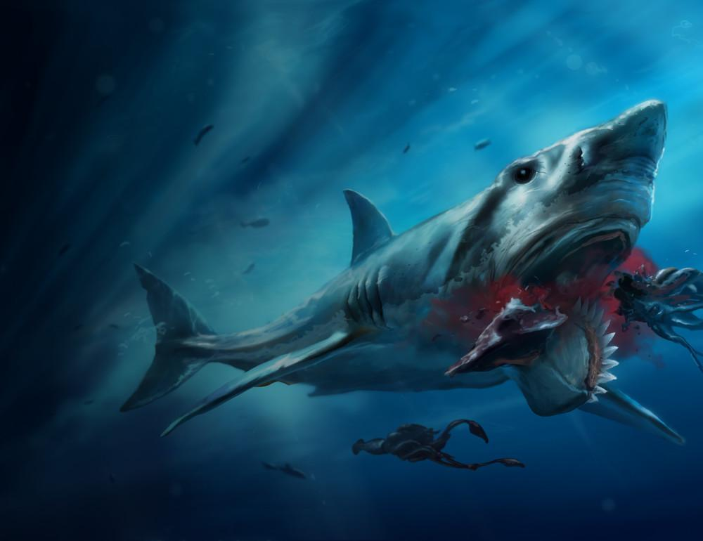 What Are the Biggest Great White Sharks Ever