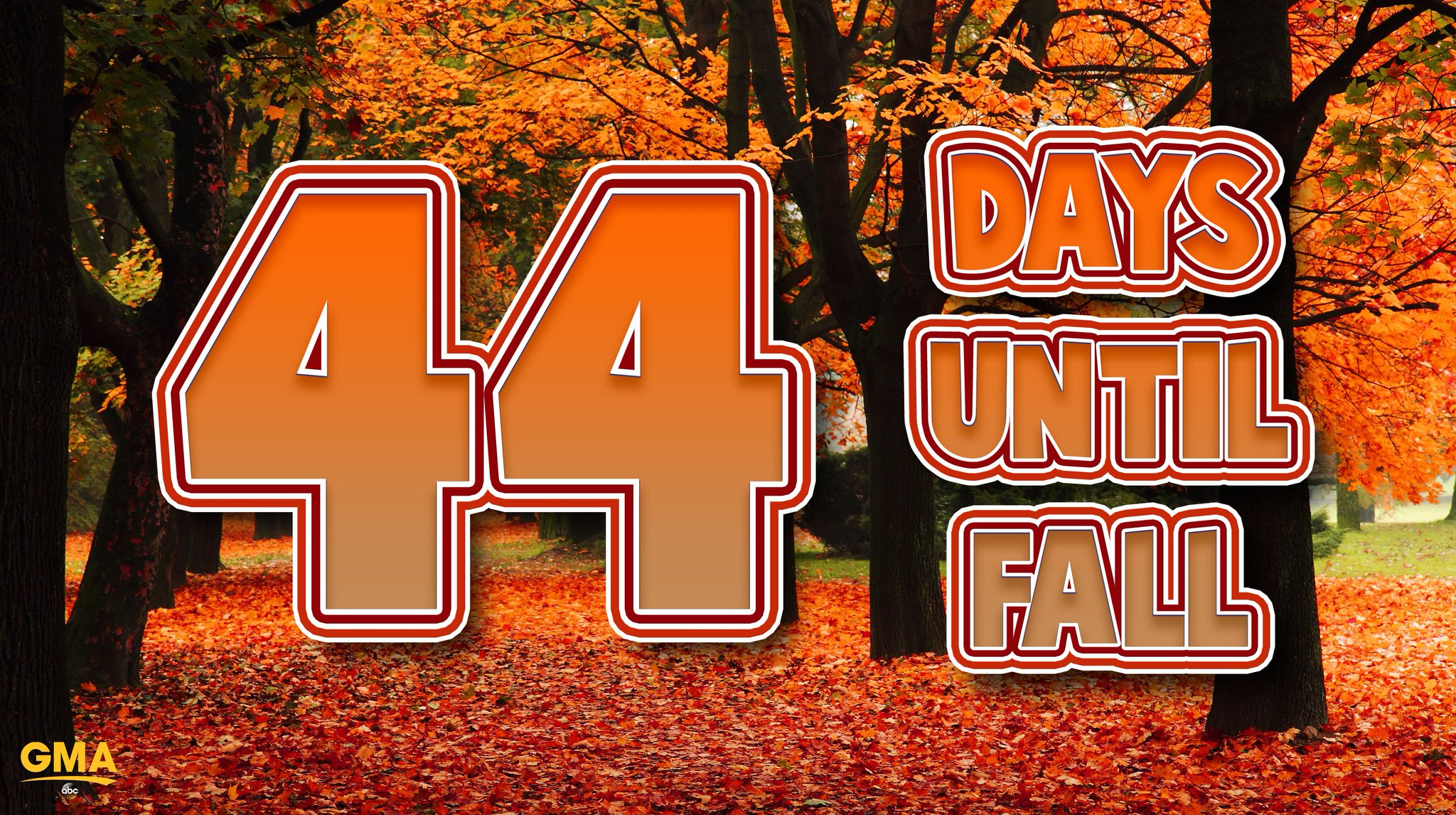 44 DAYS UNTIL FALL! �� https://t.co/83wVdfno4t