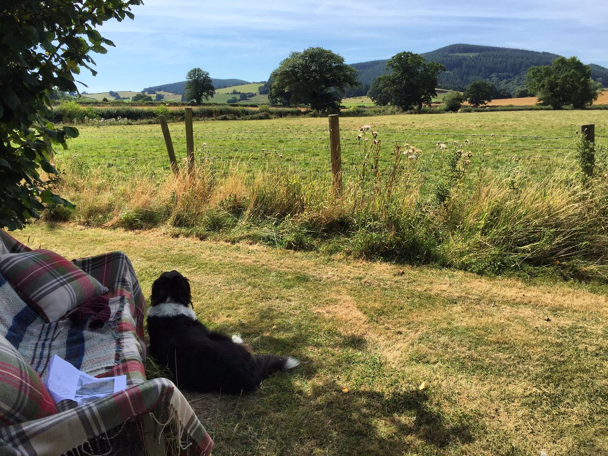 Perfect place for a spot of knitting https://t.co/NavdWfYvJM