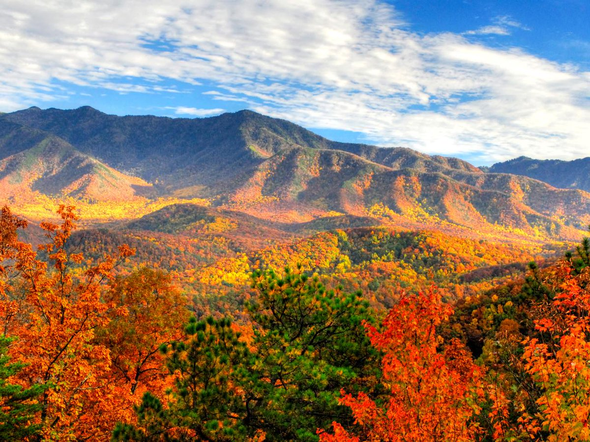 IT'S ALMOST FALL Y'ALL! @GreatSmokyNPS #Gatlinburg #PigeonForge https://t.co/GwEMLwvgfI