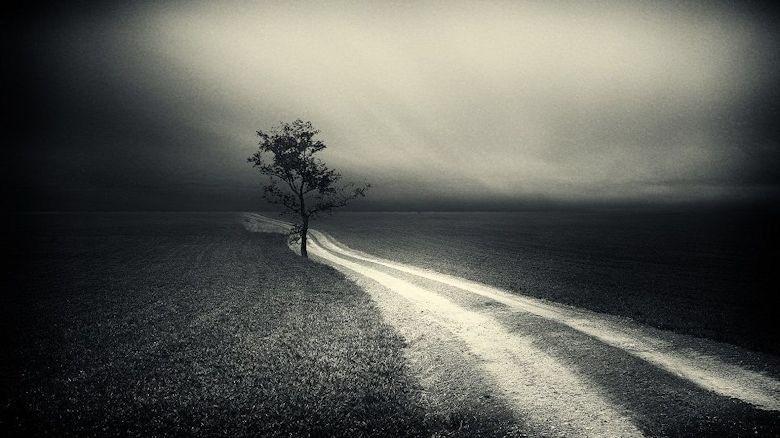 Las soledades está demás decirlo siempre andan solas.  Mario Benedetti #PoesíaBreve https://t.co/6oiMlQto1q