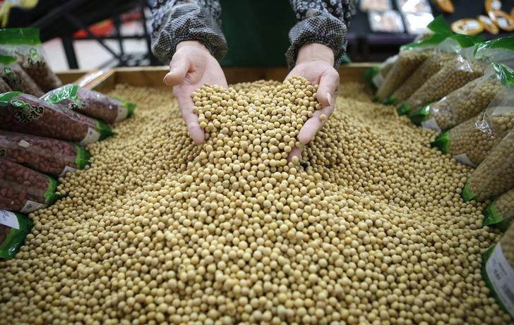 China backs GMO soybeans in push for high-tech agriculture