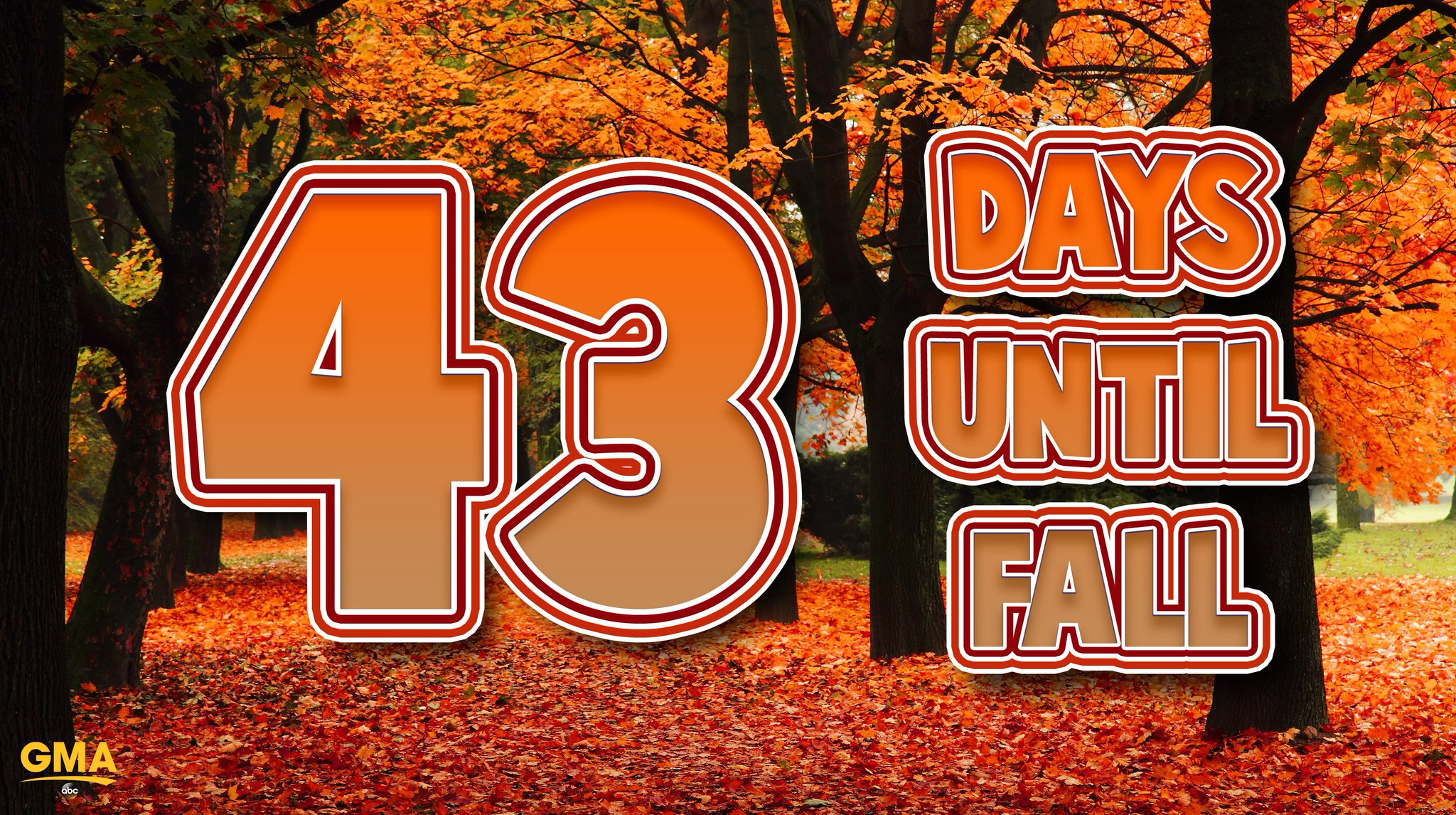 ONLY 43 DAYS UNTIL FALL! �� https://t.co/EfVyouYLy3