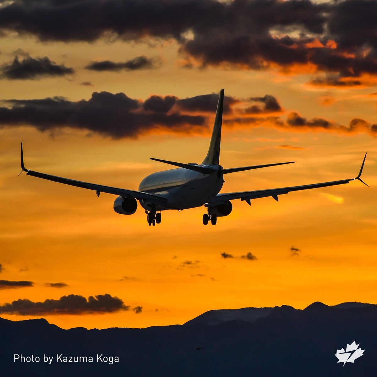 We chase gold every day. Enter our TeamWestJet ✈️ contest & you could too (in Plus)! 🇨🇦