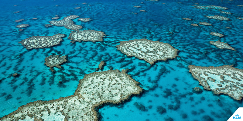 We give you the world's top snorkeling spots