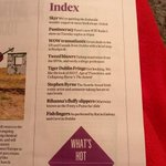 Well done @PantiBliss & @athenamediaie. The @IrishTimes thinks youre hot:) #pantisocracy https://t.co/IRVxR9JUut