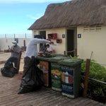 Limp Manual y Retiro de Basura Playa Marlin @PaulCarrillo2 @manolomprieto @AytoCancun @RCA1059FM @VivoEnCancun https://t.co/FHMqxt4BFx