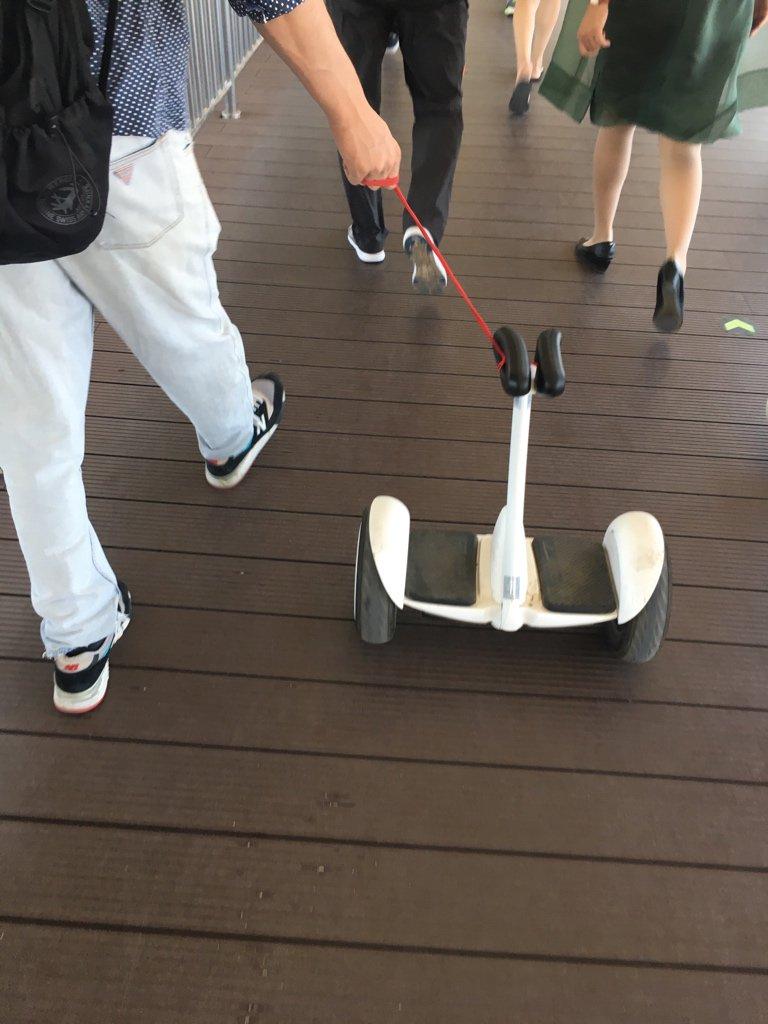 头一回见着这么用平衡车的⋯跟遛狗似的⋯ https://t.co/FcnNxScCrP