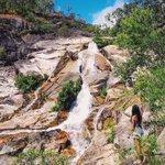 #EmeraldCreekFalls in the Aussie bush between Kuranda & Mareeba by @wheresyoyo 💦✨ Whos been? #exploreTNQ https://t.co/VCTgBwr2xU