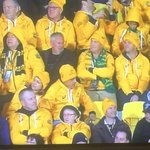 #NZLvAUS Its just a game - cheer up. https://t.co/jCua3Y91nl