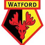 @WatfordFC  vs @Arsenal , Go Hornets 👊 https://t.co/C7dnMAabnH