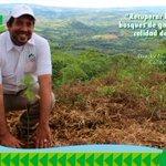 El reforestar beneficia a las comunidades. Estamos conscientes de eso #ReforestaPanamá https://t.co/LAvRJtxpi1
