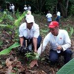 @CruzRojaPanama dijo presente en el día #ReforestaPanama alianza por el millón de @MiAmbientePma https://t.co/CEFnkPcHm1