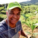 Cuando ya no tengamos árboles, entonces sabremos que el #Dinero no se come. #AlianzaPorElMillón #ReforestaPanamá https://t.co/fxJnXhOoNu