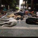 Dear @narendramodi @JPNadda @ArvindKejriwal this is #SafdarjungHospital Delhi,28th Aug 3.30 am. https://t.co/lpbW6Gcftm