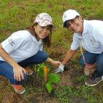 Mingob en 2do Gran Día Nal. de #ReforestaPanamá -Tanara de Chepo @Sinaproc_Panama @SUME911 @GobernacionPma @BCBRP https://t.co/peM3b37j8v