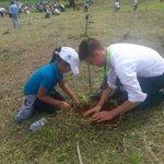 Lester Sánchez @oratoriapanama del Colegio Bilingue Ebenezer, Colón planta su árbol en #ReforestaPanamá https://t.co/10YrdBoMvx