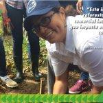 #ReforestaPanamá #ARAP agradece a las instituciones que se sumaron a esta gran jornada en Montijo @MiAmbientePma https://t.co/snc836UZ8e