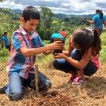 Los niños también formaron parte fundamental en nuestra reforestación en El Montuoso de Herrera. #ReforestaPanamá https://t.co/ndYHE6xQSx