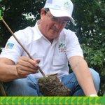 Un árbol es nuestro contacto más íntimo con la naturaleza. #ReforestaPanamá https://t.co/rboqY23b1z