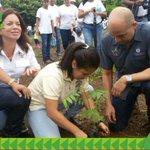 Autorides, trabajadores e invitados de @ATP_panama particiapan de la gran jornada de reforestación #ReforestaPanama https://t.co/xXQJv9flkh