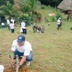 El Batallón Caribe, el @Meduca_Panama y @MiAmbientePma sembraron 299 plantones en Nusagandi #ReforestaPanamá https://t.co/e8JcfV7Bv4