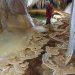 هل تعلم  ان هذا المكان الرائع مغارة يبلغ طولها 3 كلم وموجودة في #تونس_المزيانة  #جبل_السرج من ولاية سليانة/عين الذهب https://t.co/ZYDkGMx9Ik