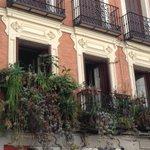 Un balcón de lo más selvático en el barrio de Maravillas/Malasaña. #Madrid #curiosidades #castizosfera @EncarniMMSS https://t.co/jV5AkXJmKP