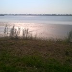 e poi osservi e respiri intensamente la laguna di #Venezia... https://t.co/8VfNuvSGhm