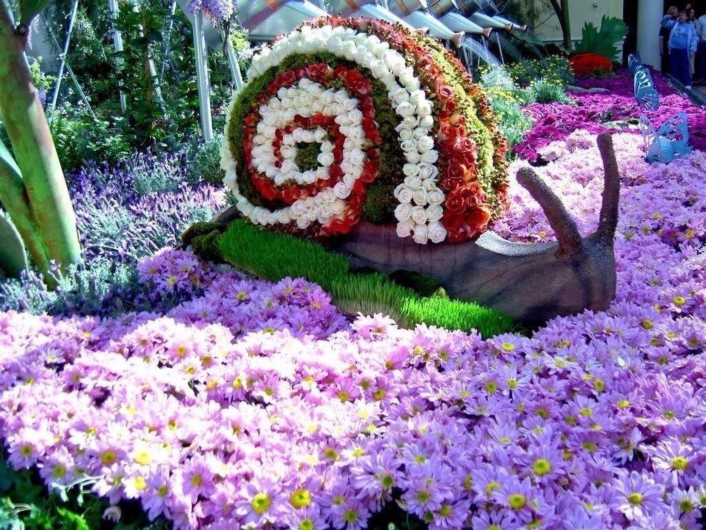 Фото красивые клумбы для цветов