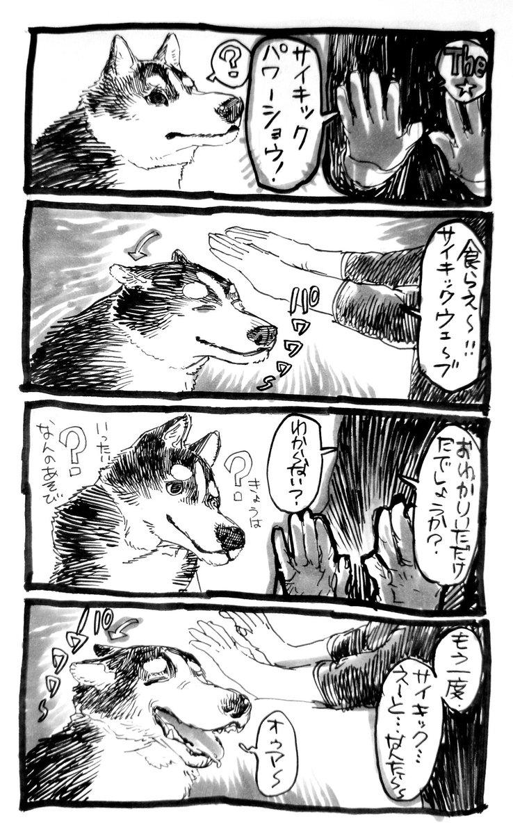 犬漫画。嬉しいときに耳がペコッと垂れるのをうれ耳というらしいですね https://t.co/6DSnneg0an