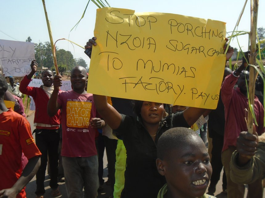 Mumias Sugar farmers demo against new cane suppliers, delayed pay