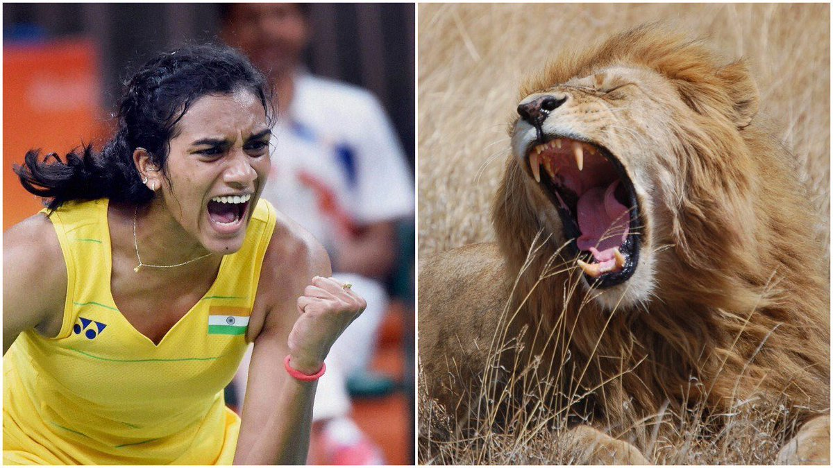 India in Finals!! Wonderful victory for @Pvsindhu1 VS @nozomi_o11 of Japan #badminton #Rio2016 https://t.co/yKWx0Z7ewU