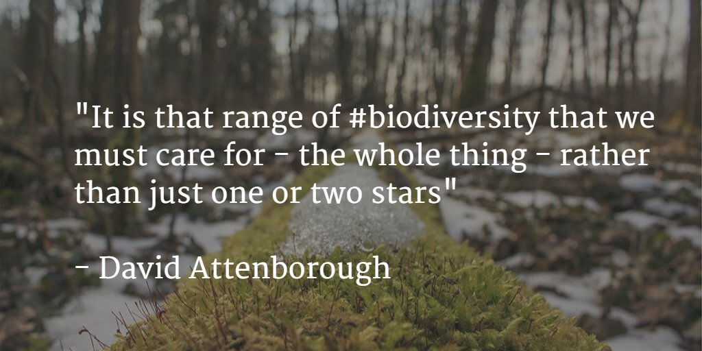 """It is that range of #biodiversity that we must care for - the whole thing - rather than just one or two stars"" https://t.co/HB1X6CQgiD"