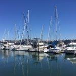 Beautiful day in Sausalito. #SF #Sunday #getoutside https://t.co/xFe9YUAB54