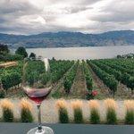Wine & a view. RT @MegChant: Fabulous view and fabulous wine #QuailsGate #SipKelowna #winetasting @Tourism_Kelowna https://t.co/hQbPy2kR6v