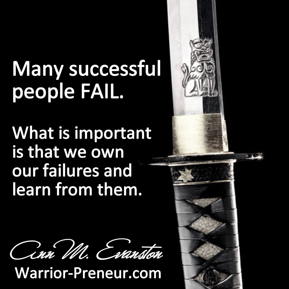 Failure is an Option - Ann Evanston | Warrior-Preneur - https://t.co/wzkmKoAdYG https://t.co/lkidaTAL8r