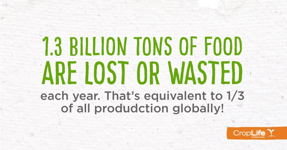 How much food is lost or wasted every year? These numbers will surprise you! https://t.co/zNX3Nr5u7O